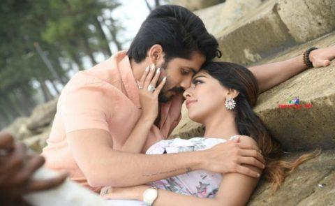 Sailaja Reddy Alludu Movie New Stills