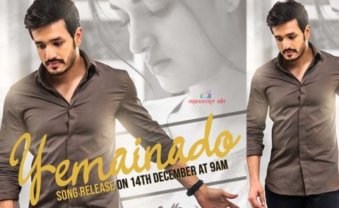 'Mr Majnu' First Single Announcement Poster