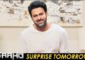 Prabhas's Surprise To His Fans