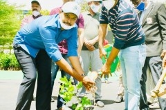 One-Lakh-Plantation-As-Part-of-Green-India-Challenge-8