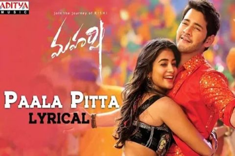 Mahesh Fans Got High With Paala Pitta Song