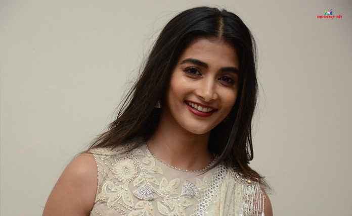 Pooja Hegde at Valmiiki Pre Release Event