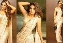 Niddhi-Aggerwal-Dotted-Sree