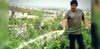 Chiranjeevi's Morning Duty
