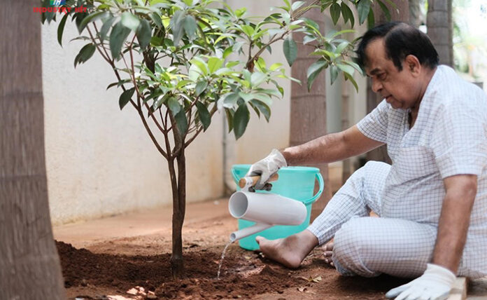 Brahmanandam Plants Saplings As A Part Of Green India Challenge